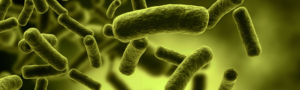 MicroSENSE - Antibiotic Discovery and Development